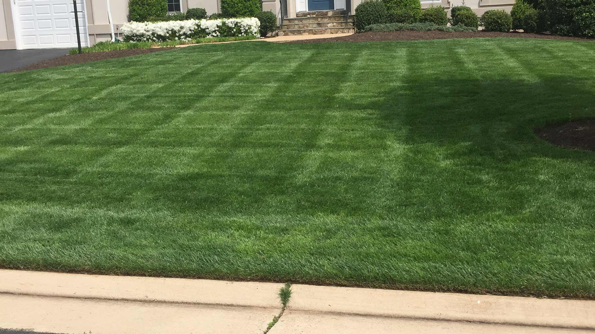 A well maintained home lawn in Warrenton, VA.