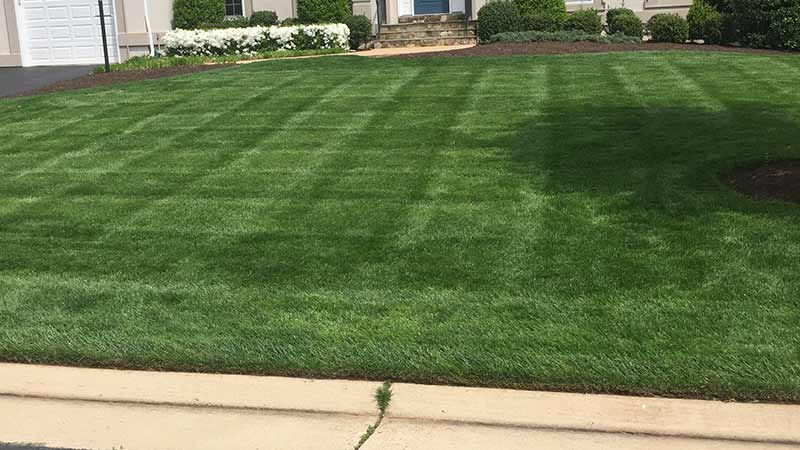 Warrenton, VA home lawn with regular maintenance.